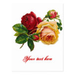 Red & Yellow Roses Postcards