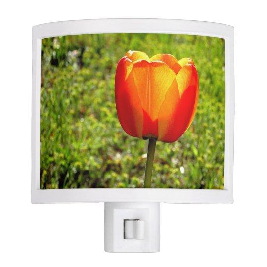 Red & Yellow Tulip Nightlight Night Light