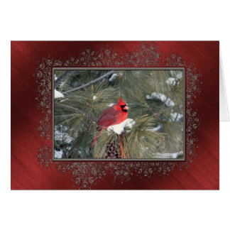 Redbird in the Snow Card