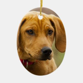 Redbone Coon Hound Dog Puppy Ceramic Ornament