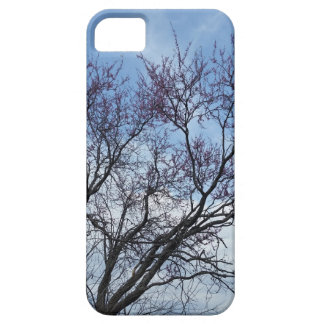 Redbud and blue sky iPhone 5 case