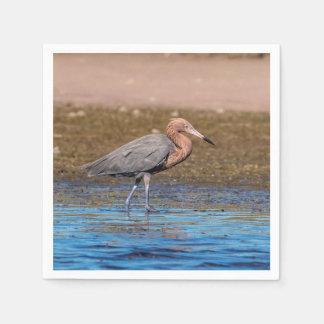 Reddish Egret on North Beach Disposable Napkins