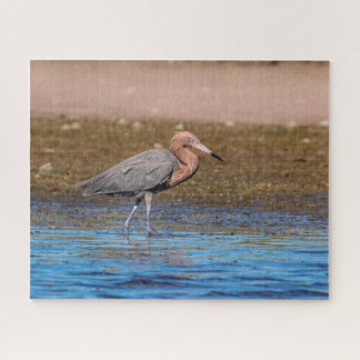 Reddish Egret on North Beach Jigsaw Puzzle