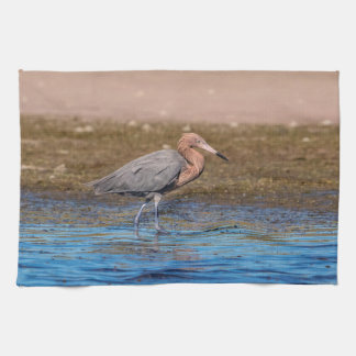 Reddish Egret on North Beach Kitchen Towel
