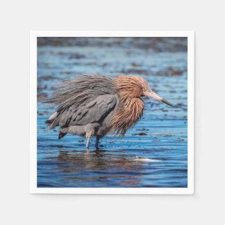 Reddish Egret on North Beach Paper Napkin