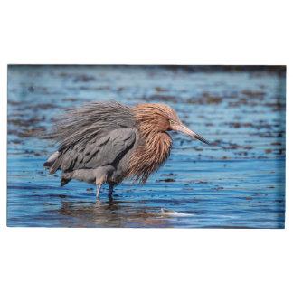 Reddish Egret on North Beach Place Card Holder