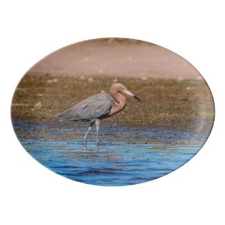 Reddish Egret on North Beach Porcelain Serving Platter