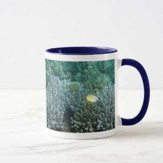 Redfin Butterflyfish (Chaetodon lunulatus) Mug