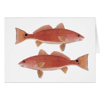 Redfish Card