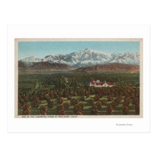 Redlands, CA - Mountain & Orchard Scene Postcard