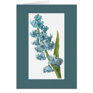 Redoute Blue Hyacinth Notecard