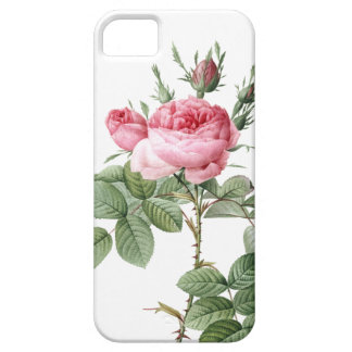 Redoute Les Rose #2 iPhone 5 Cover