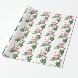 Redoute Les Rose #2 Wrapping Paper