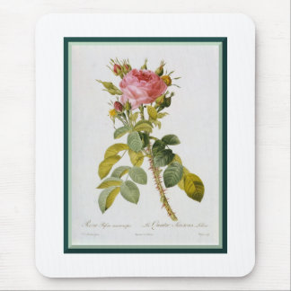 Redoute Rose Mouse Pad