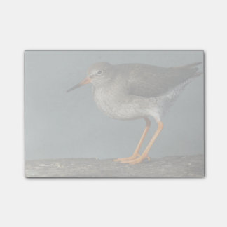 Redshank | Tringa Totanus Post-it® Notes