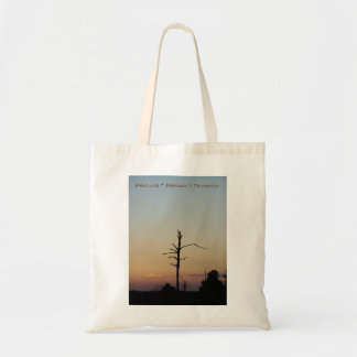 Reduce * Reuse * Recycle Tote Bag