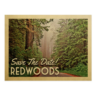 Redwood Forest Save The Date Humboldt California Postcard