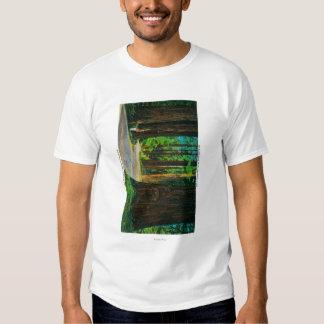 Redwood Highway in Humboldt State Redwood Park T Shirt