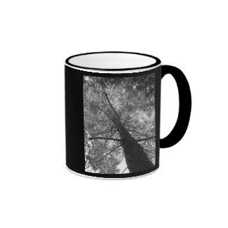 Redwood Tree Black and White Mugs