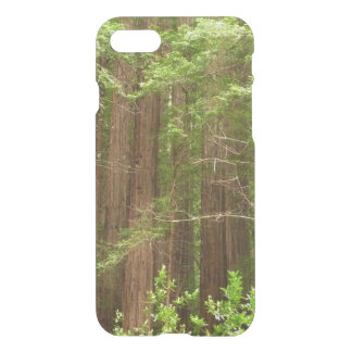 Redwood Trees at Muir Woods National Monument iPhone 8/7 Case