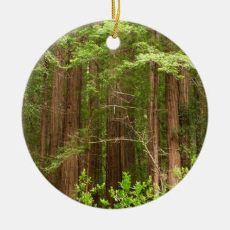 Redwood Trees at Muir Woods National Monument Round Ceramic Ornament