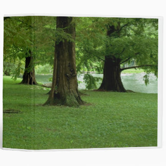 Redwood Trees Binder