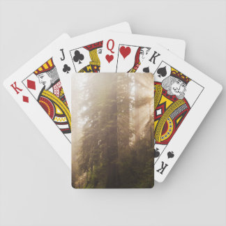 Redwood Trees in Morning Fog with Sunrays Playing Cards