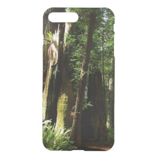 Redwoods and Ferns at Redwood National Park iPhone 7 Plus Case