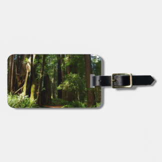 Redwoods and Ferns at Redwood National Park Luggage Tag