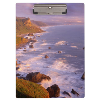 Redwoods coastline, California Clipboards
