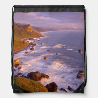 Redwoods coastline, California Drawstring Bag