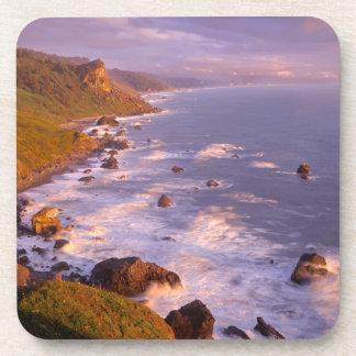 Redwoods coastline, California Drink Coaster