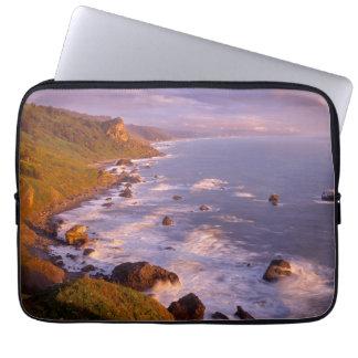 Redwoods coastline, California Laptop Sleeve