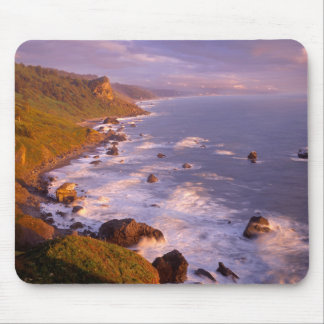 Redwoods coastline, California Mouse Pad