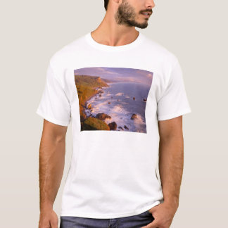 Redwoods coastline, California T-Shirt