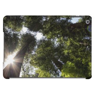 Redwoods, Humboldt Redwoods State Park iPad Air Case