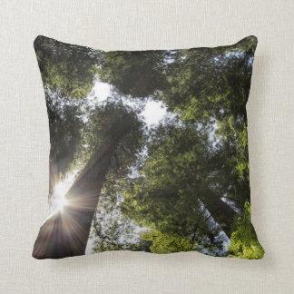 Redwoods, Humboldt Redwoods State Park Throw Pillows