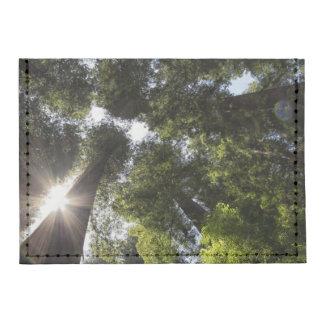 Redwoods, Humboldt Redwoods State Park Tyvek® Card Wallet