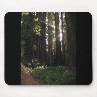 Redwoods Mouse Pad