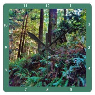 Redwoods Series #4: Hillside Wallclock