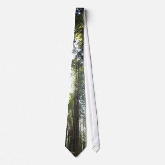 Redwoods Tie