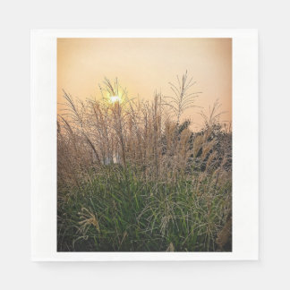 Reed At Sunset Disposable Napkin