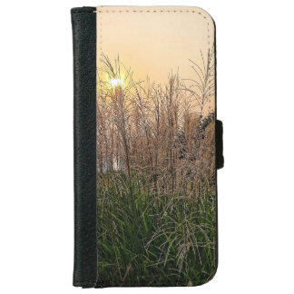 Reed At Sunset iPhone 6 Wallet Case