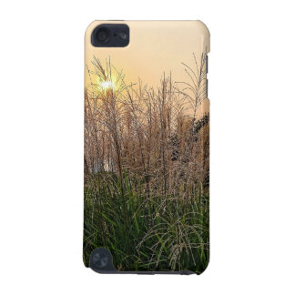 Reed At Sunset iPod Touch (5th Generation) Case