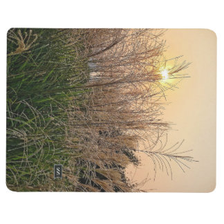 Reed At Sunset Journal