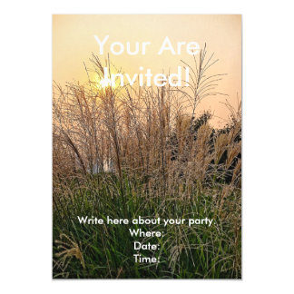 Reed At Sunset Magnetic Invitations