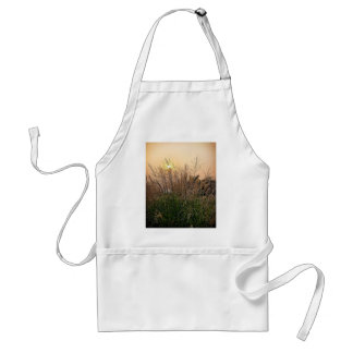 Reed At Sunset Standard Apron