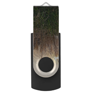 Reed At Sunset Swivel USB 2.0 Flash Drive