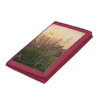 Reed At Sunset Tri-fold Wallets