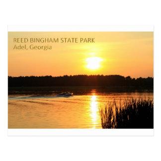 REED BINGHAM STATE PARK - Adel, Georgia Postcard